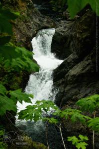 Upper Twin Falls 2014-06-21 _MG_7869